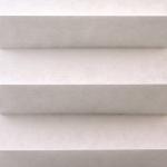 F16 977 - Silver Birch