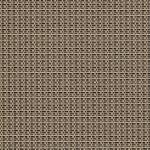 98 0082 - Shadow