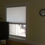 Manta Ray - Light Filtered Honeycomb