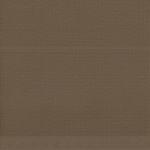 31069 - Cocoa Bean